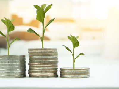 Stack of coins with sprigs growing from top indicating the growth in investment funds
