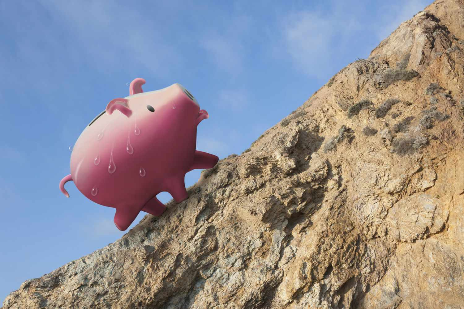 Piggy bank covered in sweat as he climbs mountain to reach financial goals for the New Year
