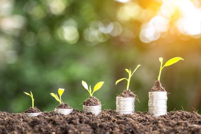 Increasingly larger stacks of coins in dirt with seedlings growing from them