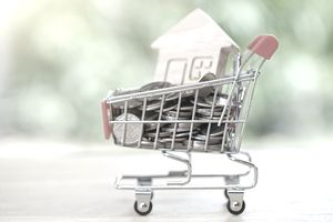 mini shopping cart with coins and a wooden house