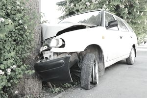 White car crashed head-on into a tree